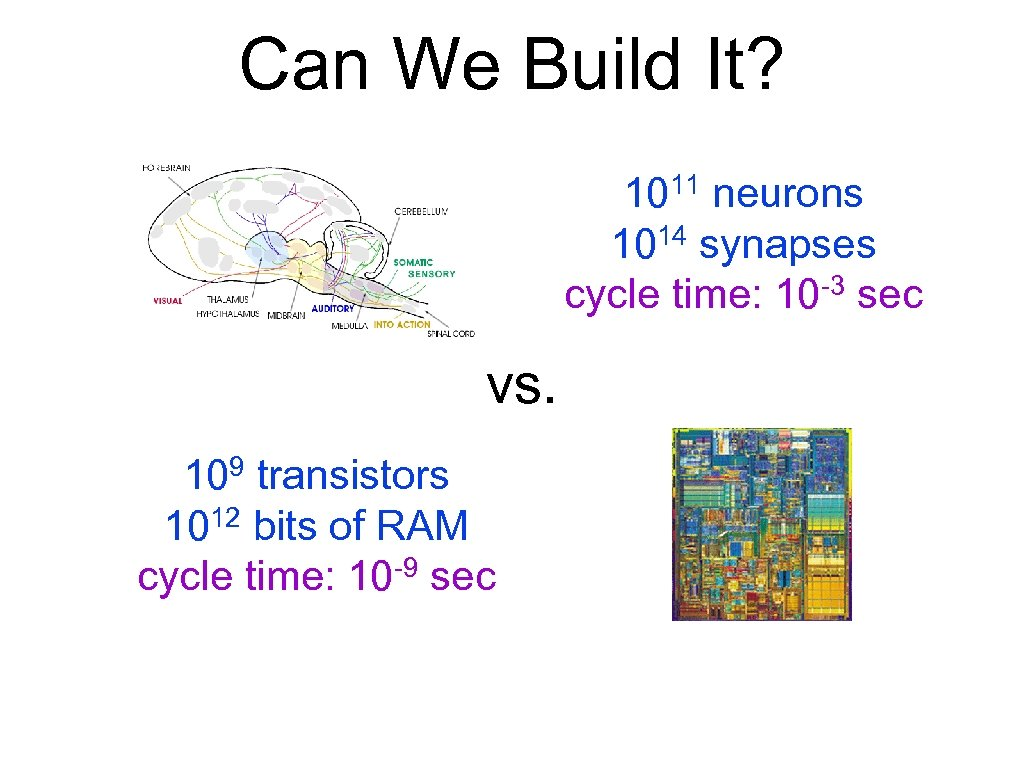 Can We Build It? 1011 neurons 1014 synapses -3 sec cycle time: 10 vs.