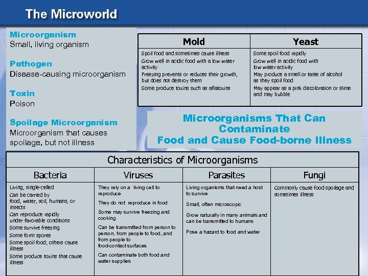 Microorganism Small, living organism Mold Pathogen Disease-causing microorganism Toxin Poison Yeast Spoil food and