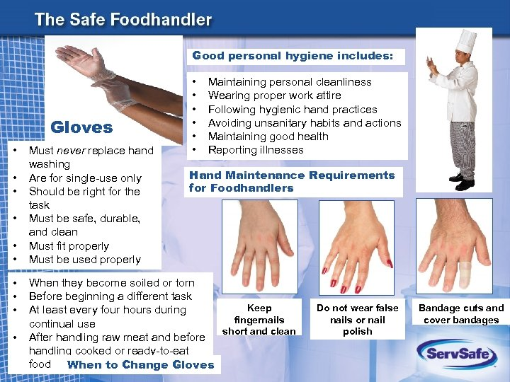 Good personal hygiene includes: Gloves • • • Must never replace hand washing Are