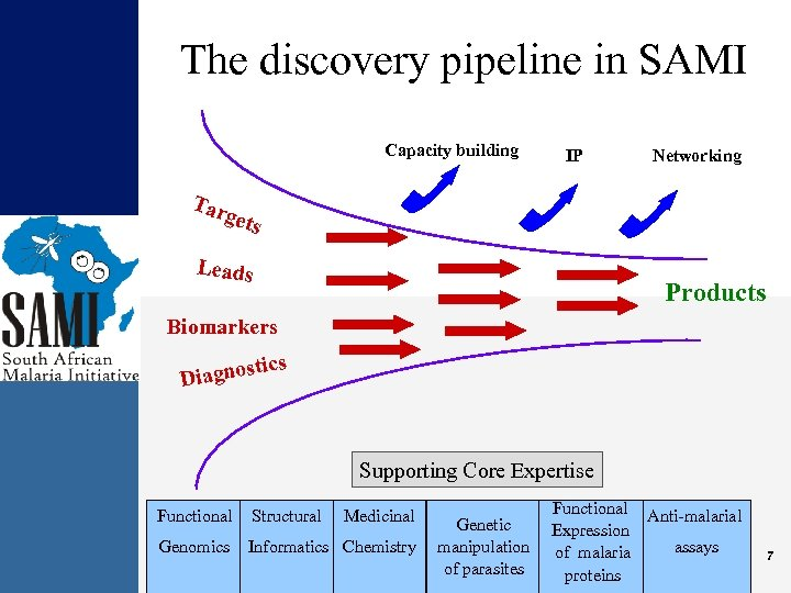 The discovery pipeline in SAMI Capacity building IP Networking Tar gets Leads Products Biomarkers