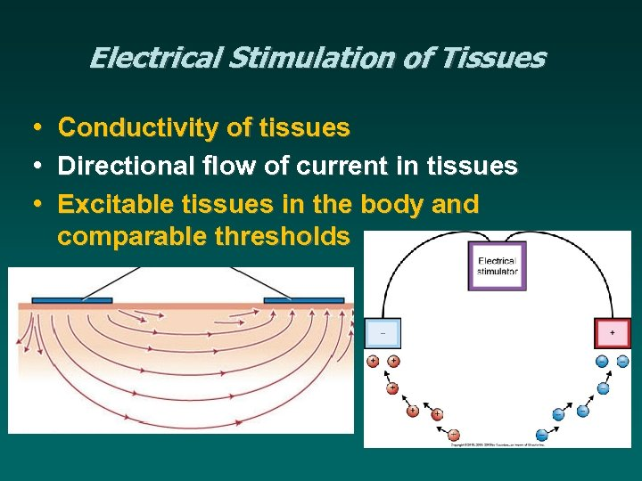 Electrical Stimulation of Tissues • • • Conductivity of tissues Directional flow of current