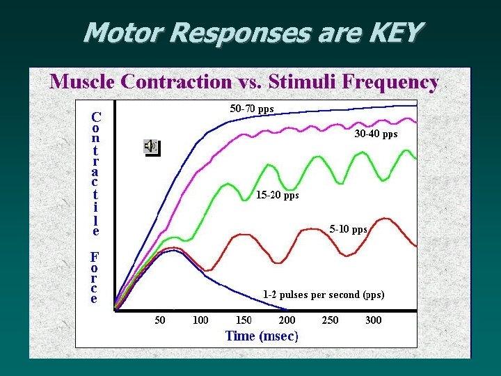 Motor Responses are KEY