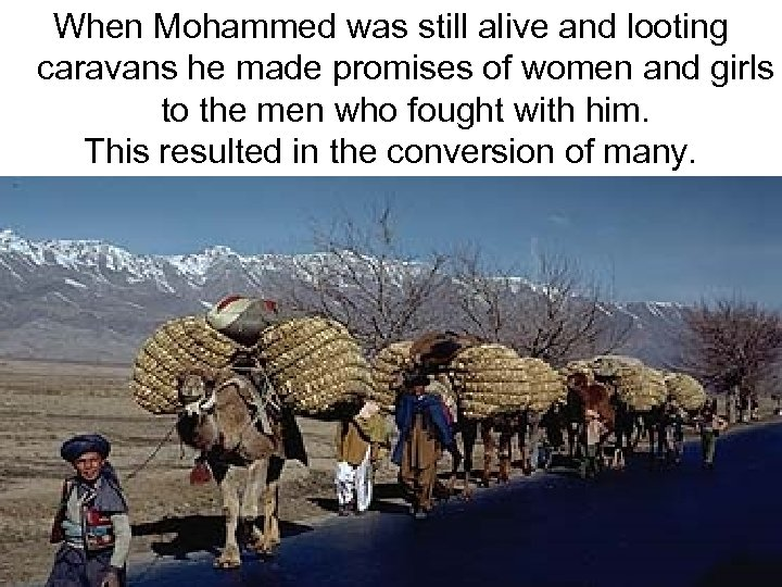 When Mohammed was still alive and looting caravans he made promises of women and