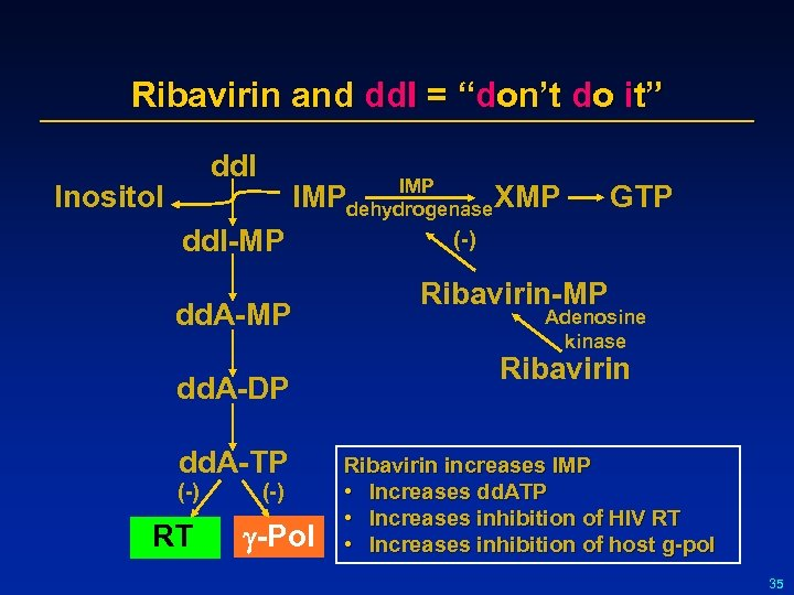 "Ribavirin and dd. I = ""don't do it"" dd. I Inositol IMP XMP dehydrogenase"