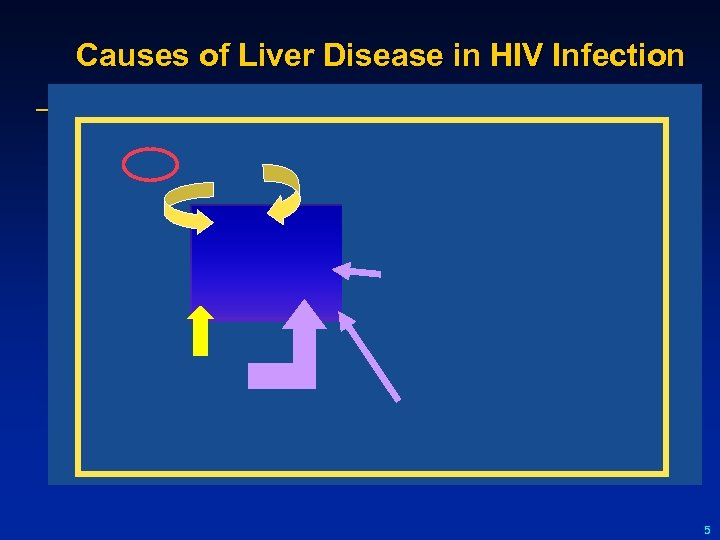Causes of Liver Disease in HIV Infection 5