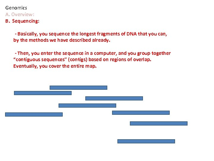 Genomics A. Overview: B. Sequencing: - Basically, you sequence the longest fragments of DNA