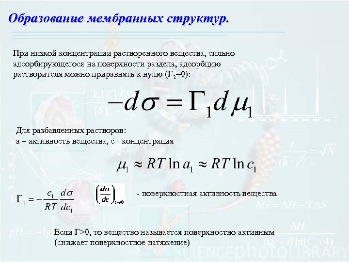 Образование мембранных структур. При низкой концентрации растворенного вещества, сильно адсорбирующегося на поверхности раздела, адсорбцию