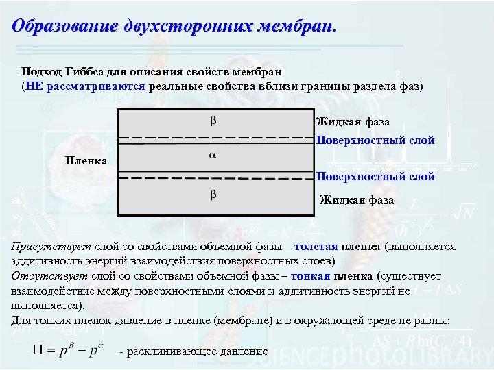 Образование двухсторонних мембран. Подход Гиббса для описания свойств мембран (НЕ рассматриваются реальные свойства вблизи