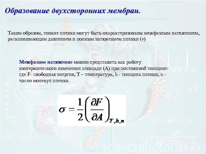Образование двухсторонних мембран. Таким образом, тонкие пленки могут быть охарактеризованы межфазным натяжением, расклинивающим давлением