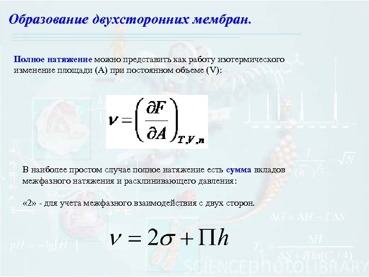 Образование двухсторонних мембран. Полное натяжение можно представить как работу изотермического изменение площади (А) при