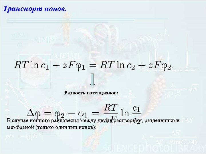 Транспорт ионов. Разность потенциалов: В случае ионного равновесия между двумя растворами, разделенными мембраной (только