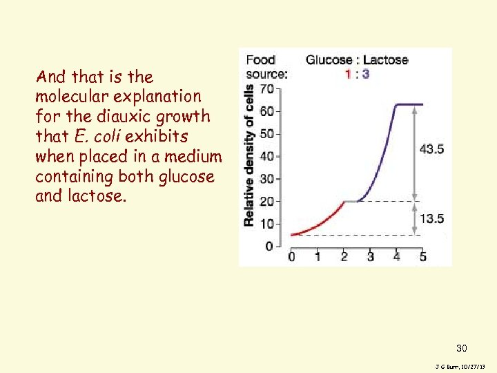 And that is the molecular explanation for the diauxic growth that E. coli exhibits