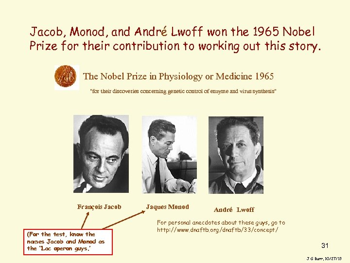 Jacob, Monod, and André Lwoff won the 1965 Nobel Prize for their contribution to