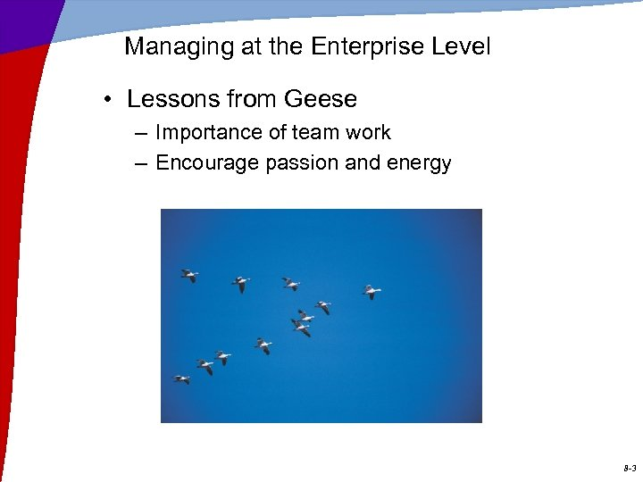 Managing at the Enterprise Level • Lessons from Geese – Importance of team work