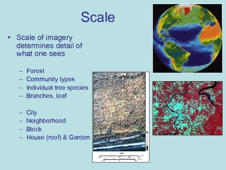 Scale • Scale of imagery determines detail of what one sees – – Forest