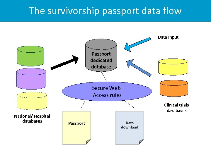 The survivorship passport data flow Data Input Passport dedicated database Secure Web Access rules