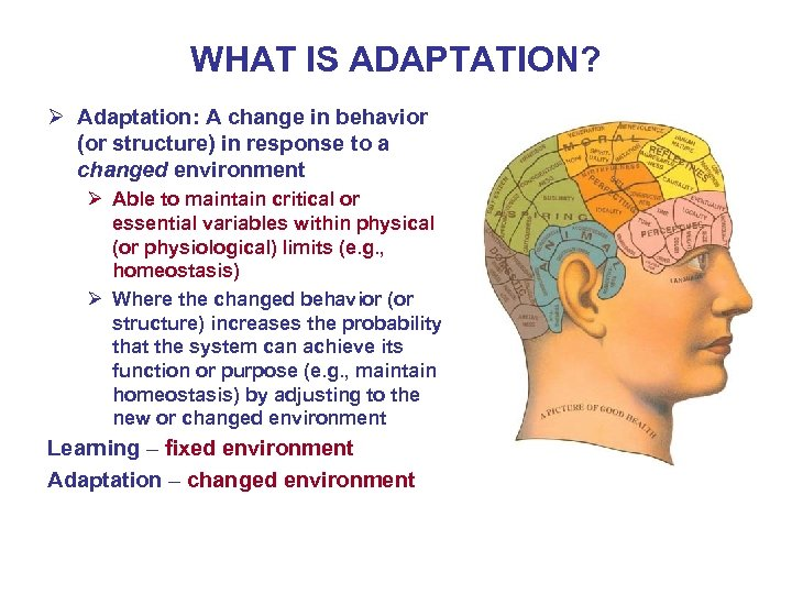 WHAT IS ADAPTATION? Ø Adaptation: A change in behavior (or structure) in response to