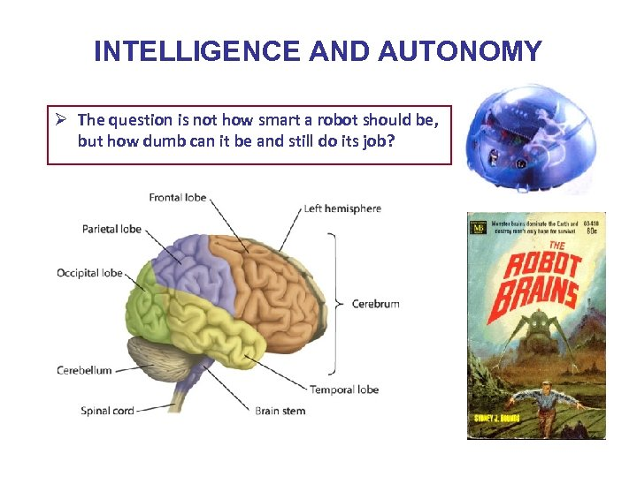 INTELLIGENCE AND AUTONOMY Ø The question is not how smart a robot should be,