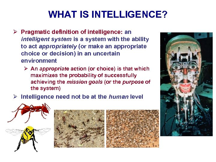WHAT IS INTELLIGENCE? Ø Pragmatic definition of intelligence: an intelligent system is a system