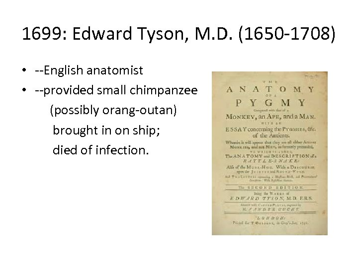 1699: Edward Tyson, M. D. (1650 -1708) • --English anatomist • --provided small chimpanzee