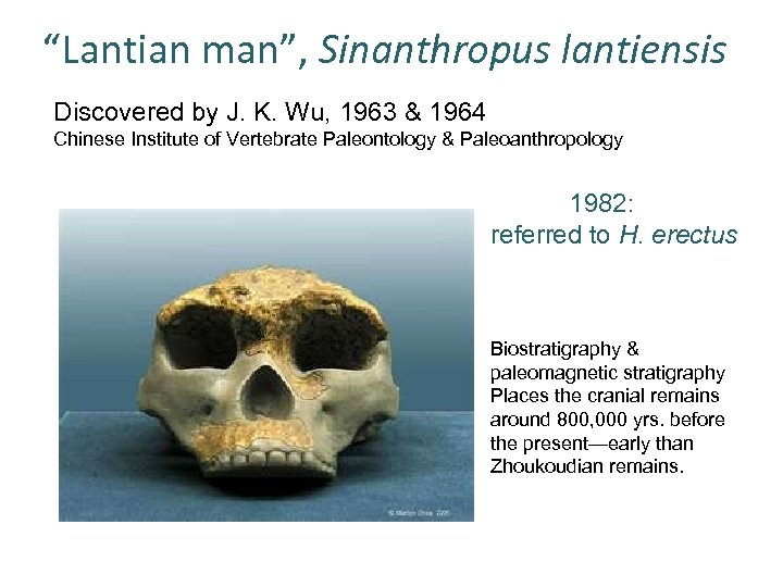 """Lantian man"", Sinanthropus lantiensis Discovered by J. K. Wu, 1963 & 1964 Chinese Institute"