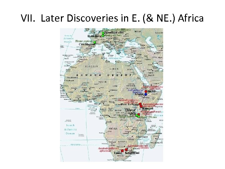 VII. Later Discoveries in E. (& NE. ) Africa