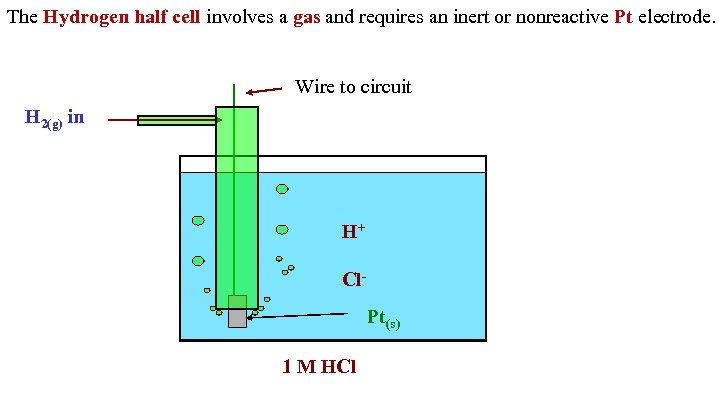 The Hydrogen half cell involves a gas and requires an inert or nonreactive Pt