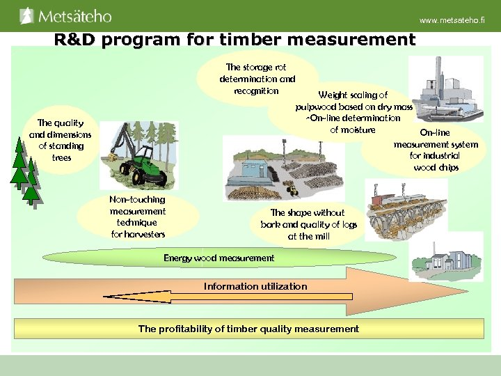 www. metsateho. fi R&D program for timber measurement The storage rot determination and recognition