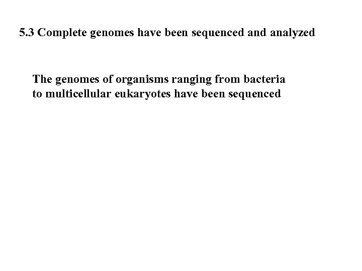 5. 3 Complete genomes have been sequenced analyzed The genomes of organisms ranging from