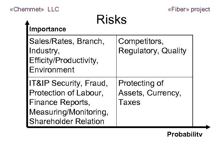 «Chemmet» LLC Importance Risks Sales/Rates, Branch, Industry, Efficity/Productivity, Environment «Fiber» project Competitors, Regulatory,