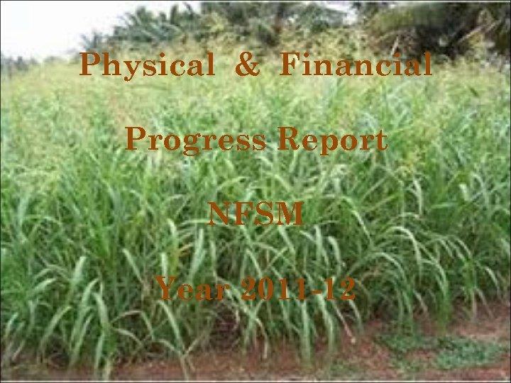 Physical & Financial Progress Report NFSM Year 2011 -12