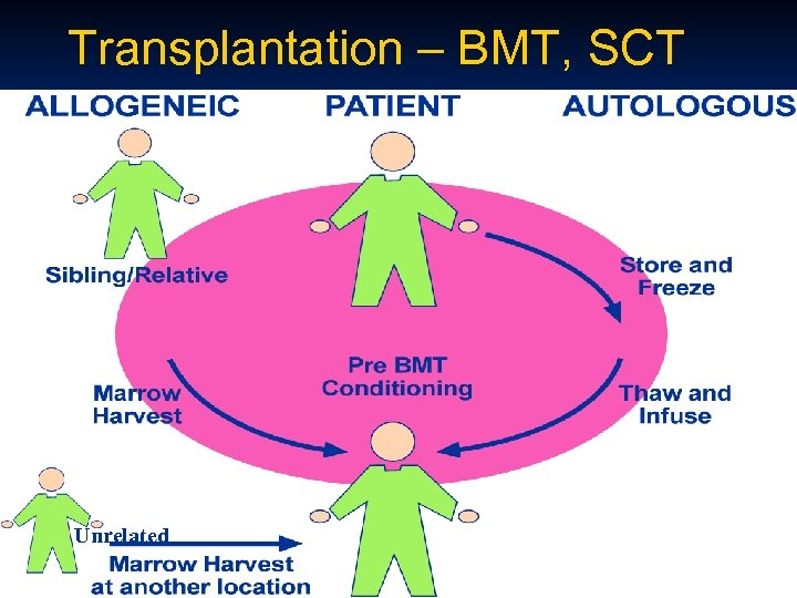 Transplantation – BMT, SCT Unrelated