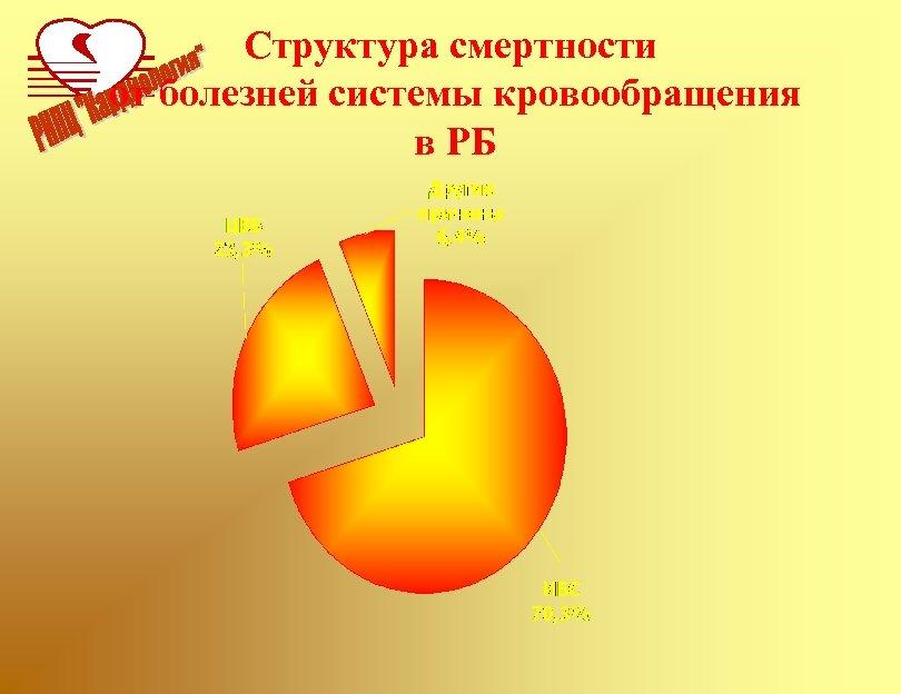 Структура смертности от болезней системы кровообращения в РБ