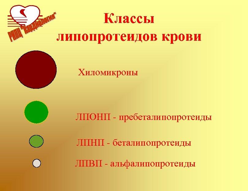Классы липопротеидов крови Хиломикроны ЛПОНП - пребеталипопротеиды ЛПНП - беталипопротеиды ЛПВП - альфалипопротеиды