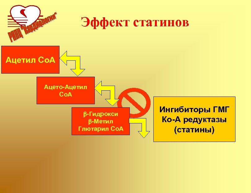 Эффект статинов Ацетил Co. A Ацето-Ацетил Co. A b-Гидрокси b-Метил Глютарил Co. A Ингибиторы
