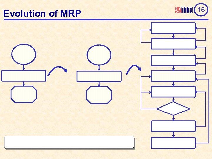 Evolution of MRP 16