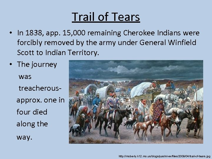 Trail of Tears • In 1838, app. 15, 000 remaining Cherokee Indians were forcibly