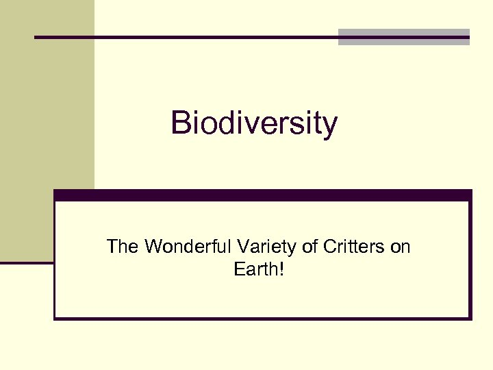 Biodiversity The Wonderful Variety of Critters on Earth!