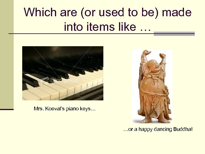 Which are (or used to be) made into items like … Mrs. Koeval's piano