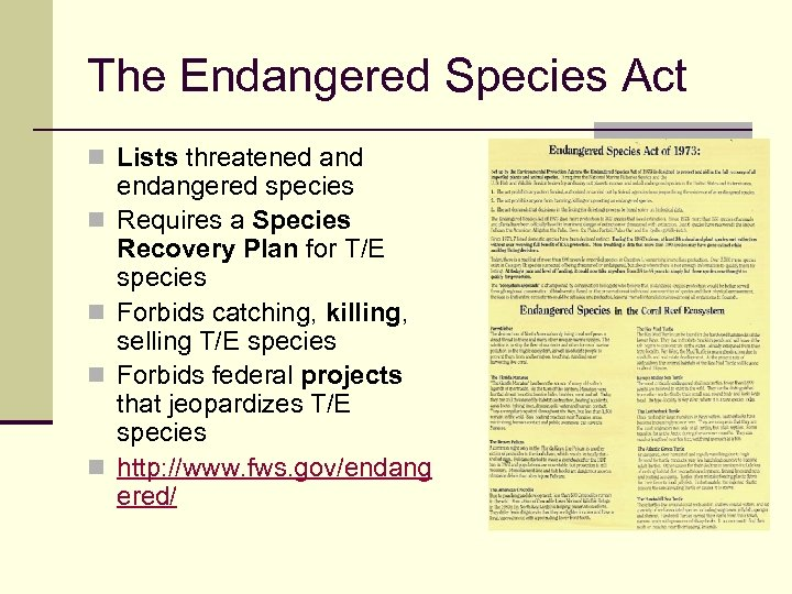 The Endangered Species Act n Lists threatened and n n endangered species Requires a