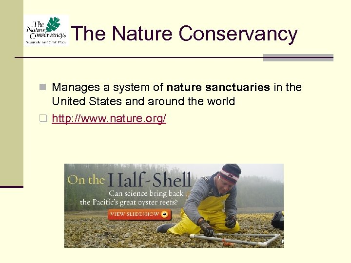 The Nature Conservancy n Manages a system of nature sanctuaries in the United States