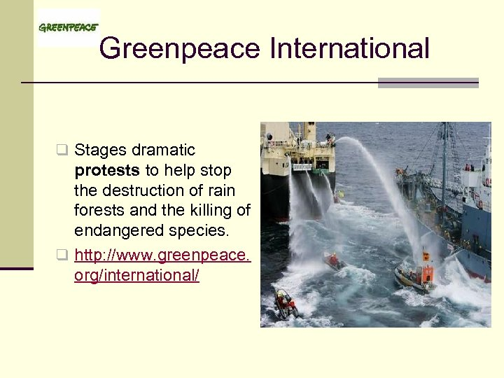 Greenpeace International q Stages dramatic protests to help stop the destruction of rain forests
