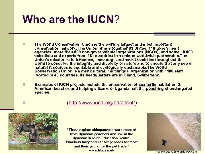 Who are the IUCN? n The World Conservation Union is the world's largest and