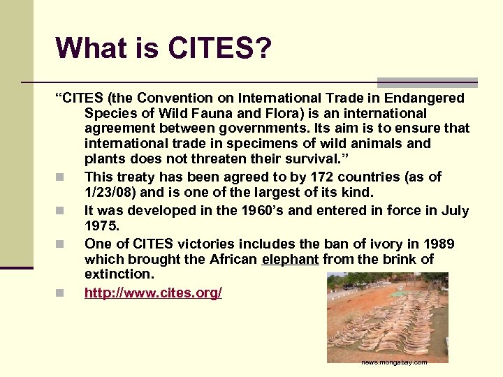 "What is CITES? ""CITES (the Convention on International Trade in Endangered Species of Wild"