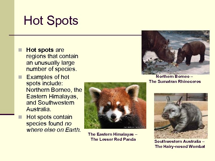 Hot Spots n Hot spots are regions that contain an unusually large number of