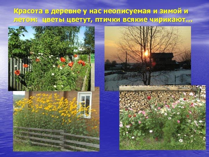 Красота в деревне у нас неописуемая и зимой и летом: цветы цветут, птички всякие