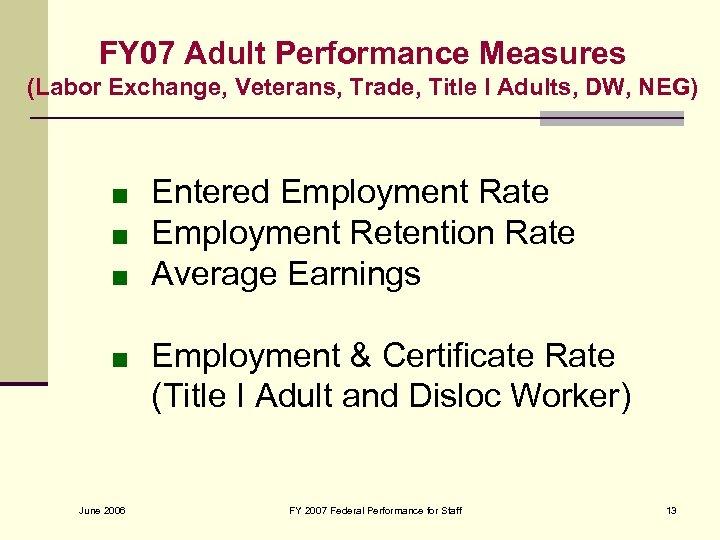FY 07 Adult Performance Measures (Labor Exchange, Veterans, Trade, Title I Adults, DW, NEG)
