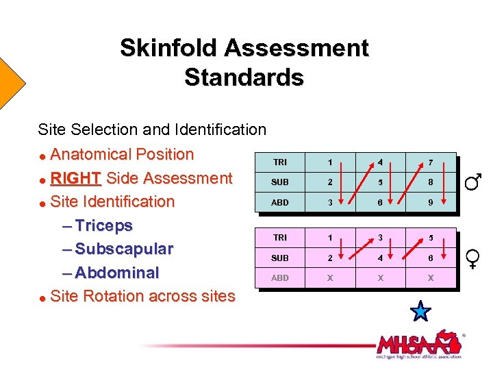 Skinfold Assessment Standards Site Selection and Identification Anatomical Position = RIGHT Side Assessment =