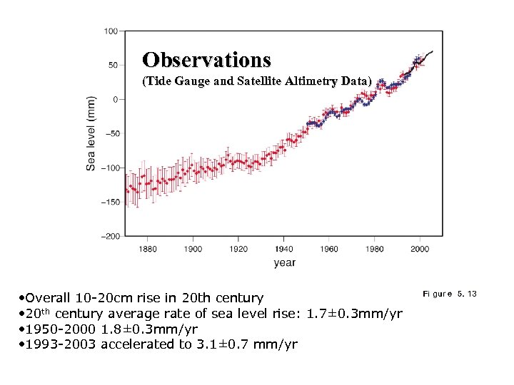 Observations (Tide Gauge and Satellite Altimetry Data) • Overall 10 -20 cm rise in