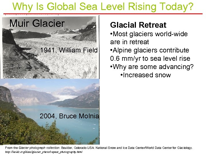 Why Is Global Sea Level Rising Today? Muir Glacier 1941, William Field Glacial Retreat